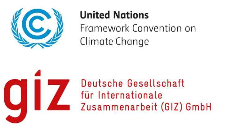 UNFCCC and GIZ present: Webinar series on Methodologies for